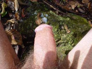 jerking off in the sun on a nice fall day...love being nude outside