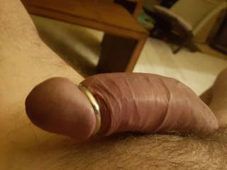 Thick and throbbing after a cam session