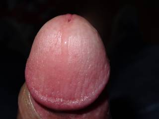 a close up of my penis hope you like it :$