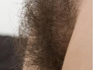 My super hairy girlfriend