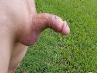 Brian Stoddard showing off his small hairless penis