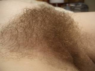pregnant wife\'s full hairy pussy. just love burying my face in her mound and breathing in her sweet scent