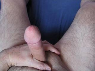 Would anyone care to lick and suck this cock?