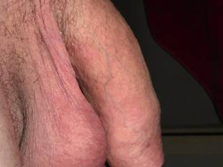 Side view of my hanging cock.