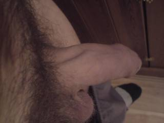 i want some hairy mature women to enjoy my hairy young cock