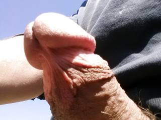 Enjoy being outdoors and showing off in public to those that want to see and show me in return