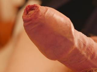 Covered wank