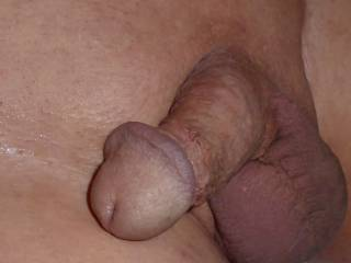 Far too many hard big dicks on ZOIG so here are some pics of a small soft dick waiting for someone to suck it and however get it hard to cum and satisfy !