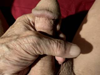 Stroking my cock while thinking about sucking one.