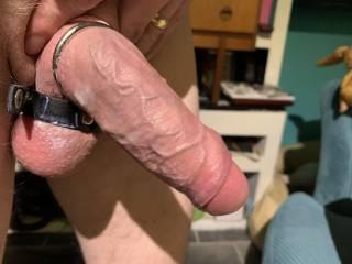 My throbbing cock