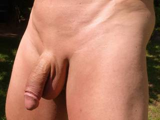 This is my very smooth penis, all pubic hairs have been removed by laser hair removal for ever. I´m not circumcised, but I have a short foreskin.