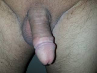 im the male...that is my cock