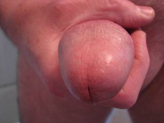 Almost close enough to lick. Would you like to?