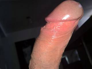 His balls tied up, veins popping up and his head nice and oily, a perfect cock, don't you think?