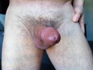 Fully exposed for your pleasure...….so hard and ready to explode!