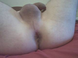 shaved asshole & dick