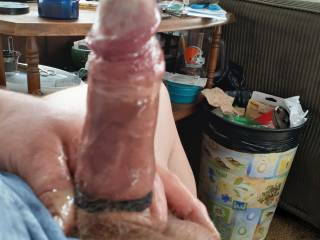 Just my lubed up cock, looking for a rider!