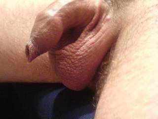 Don't worry sweetie, it would be in good hands....and mouth.  I love sucking on fragile and delicate cock.  They are so good at cumming.  K