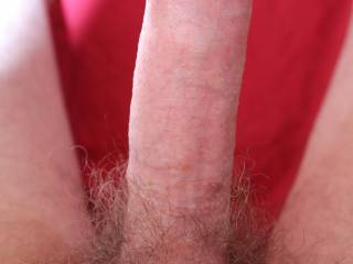 your meat would be better if shaved smooth for oral fun for you and the ladies