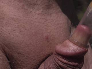 Was out in the bush pumping my nipples and wondered what would happen if i pumped my little cock cum slit ! Photos of my plump engorged lips to follow !