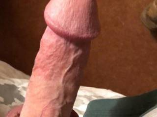 In position for a dirty little blowjob.