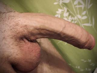 My big veiny cock