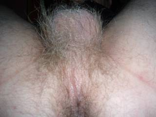 And what a hot hairy ass that is... would love to get my tongue all over that