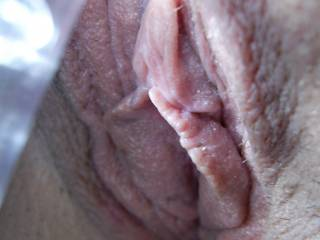 hubby  and i both  would love to  lick that perty little thing