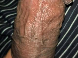latin cock waiting for you