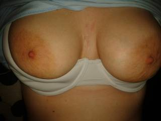 She just loves to get her tits out so i can give her nipples a quick bite