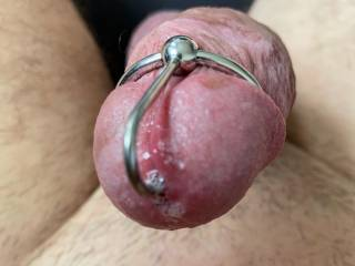 First time with my new penis plug with glans ring. I love the feeling on my cock head ;)
