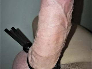 playing with my cock and cockrings... one of my first testing and I think that could fit it any pussy :)