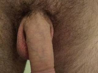 My soft freshly trimmed cock, anyone want to see it get hard?