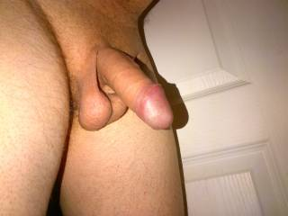 Full flacid penis, what do you think?
