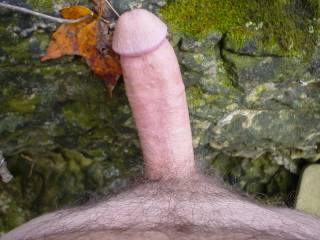 nude outside in the woods...gotta get naked before winter
