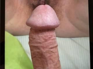 Hard and ready for my friends waiting pussy.