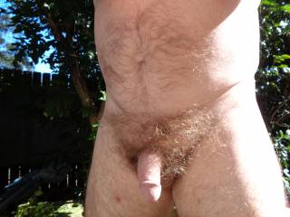 heres  my soft & hairy penis in the great outdoors,, well a sunny spot in my backyard