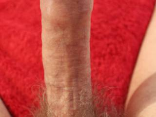 A solid erection, a dark purple, swollen glans, veins standing out, my meatus lips parted this can only mean one thing.....I am very close to cumming.  Would you like to help ?