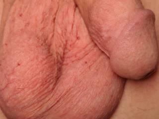 Lick my balls and make it grow!