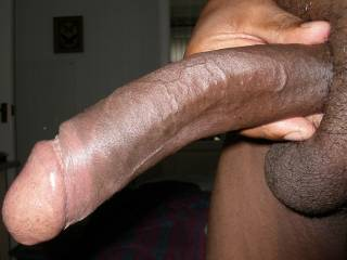 That is one beautiful cock.  Thick and long...  I wonder if I could deepthroat that whole thing.  Hell...I wonder if I can take it all in any of my holes.  Either way, I bet it would feel great stretching me out to accomodate all of that lovely manmeat...