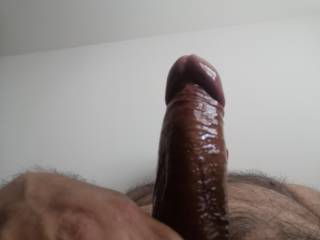 Hard oiled cock