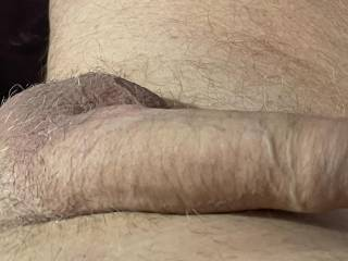 I definitely need a shave  Id like some help in my cock and balls !