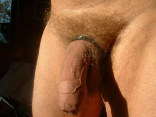 intro to a rising cock. wanna give a helping hand?