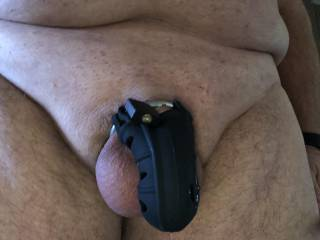 Happy Birthday to me!  I bought myself a new cock lock and some black satin panties.  Love to be locked up and pantied.