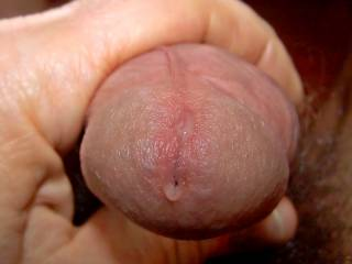 my pussy is aching for a cock like yours - i can barely handle the pain...please come fuck me nowwwwww