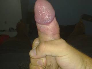 the cock i normally get to play with. any girls want to help me with it?