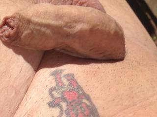 Well do you like my uncut cock ?