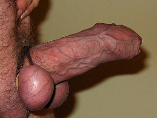 That is just beautiful....gorgeous, sheathed, un-cut cock....and those smooth, tied balls...perfect for licking and sucking...x