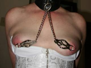 honey I love the clamps and the nipple pain! Nothing better when a guy is driving it home to a hot lady to have his nipples pinched hard as well as hers love to become friends!