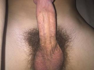 Great looking big thick cock, big balls and a huge mushroom head.